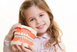 paediatric dentist in Hornsby